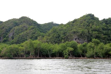 Montañas kársticas cubiertas de pluviselva con manglares primitivos debajo son la característica de una de las áreas protegidas más deslumbrantes del Caribe: el Parque Nacional Los Haitises. Foto: Jeremy Hance.